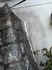 西宮市 | オオスズメバチ駆除