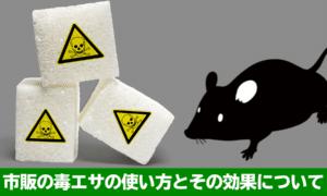 ネズミ用の毒餌は1%未満しか毒が含まれていない